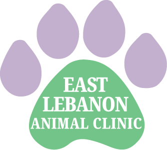 East Lebanon Animal Clinic